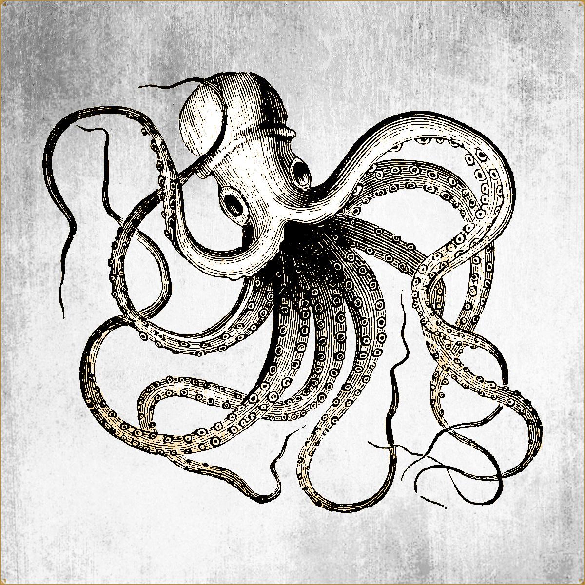 BricolArts - Artist profile picture - Polypus logo